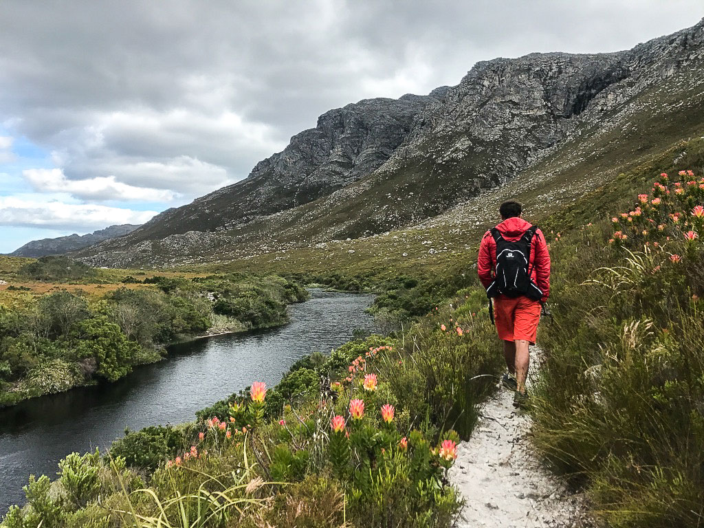 kogelberg-trail-palmiet2