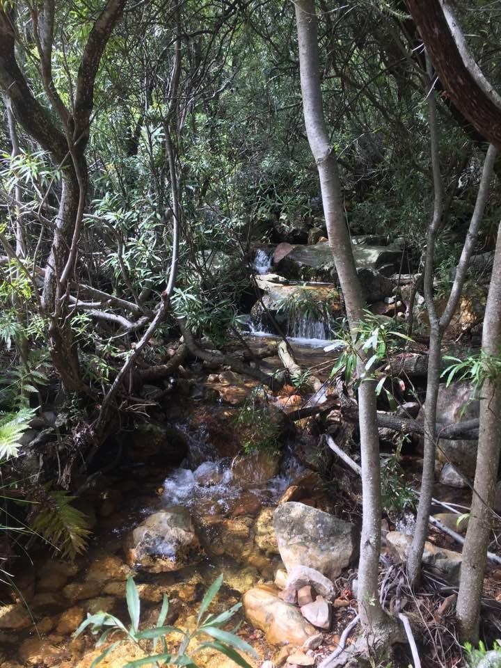 miaspoort-stream-crossing