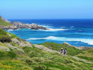 otter-trail-along-the-coast