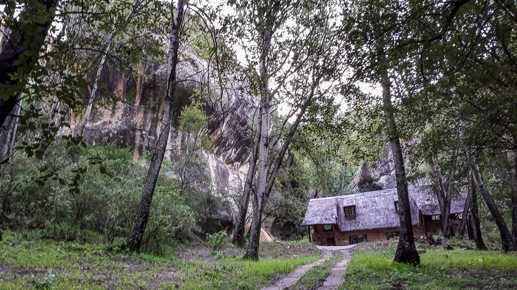 sporekrans-base-camp-1