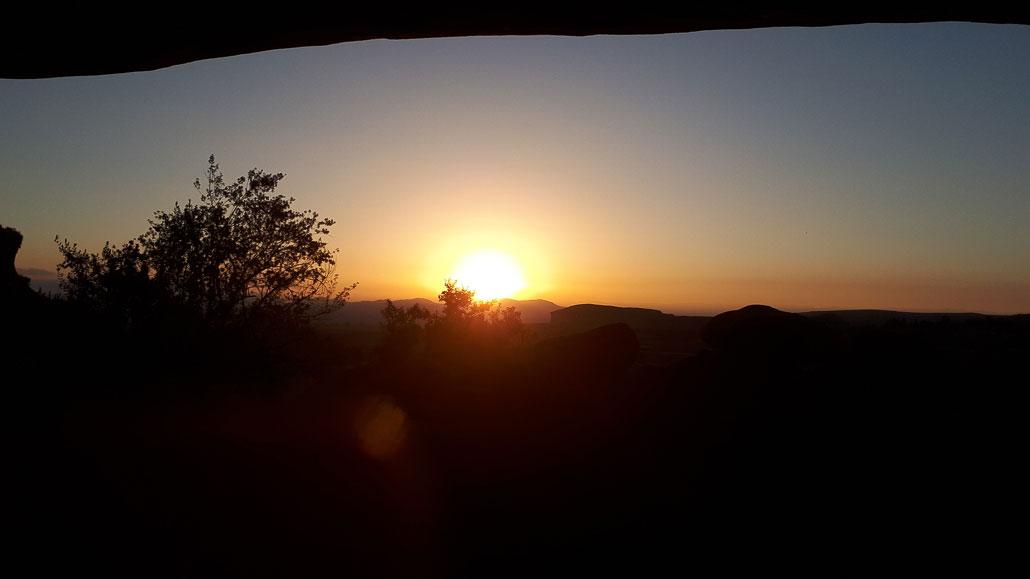 sporekrans-sunrise