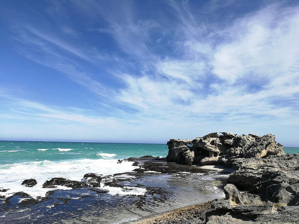 whale-trail-shoreline