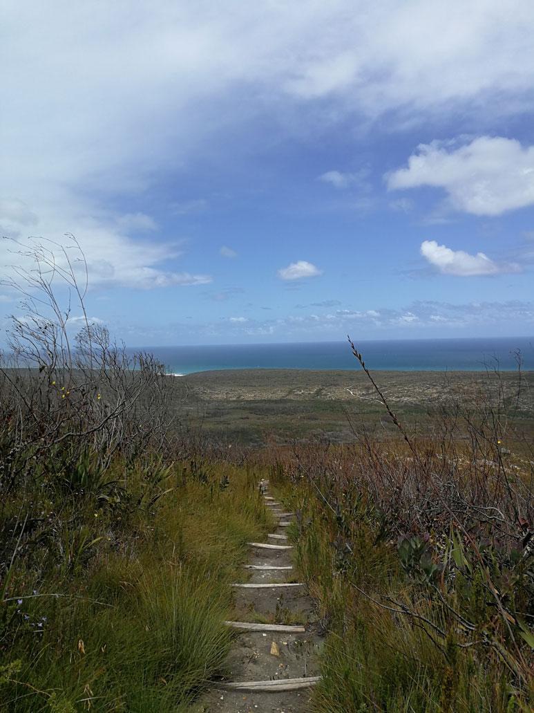 whale-trail-steep-descent