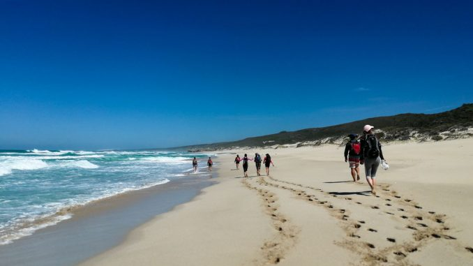 whale-trail-walking-along-beach-3