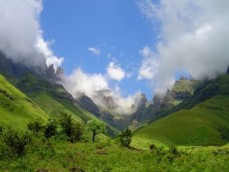 drakensberg-summer-fangs-2