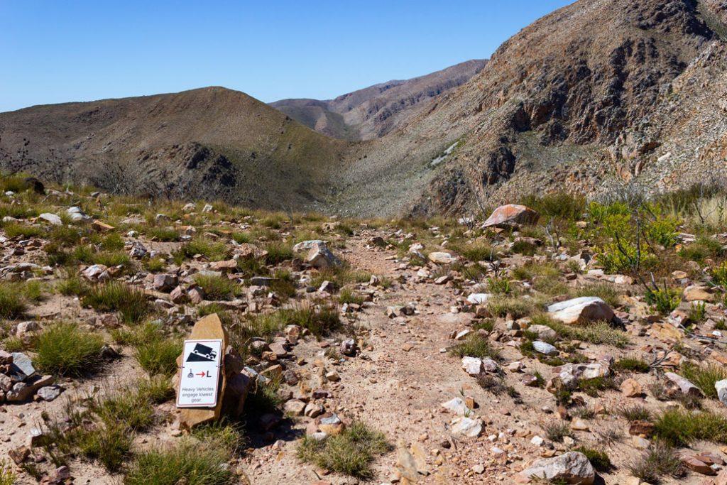 leopard-trail-117