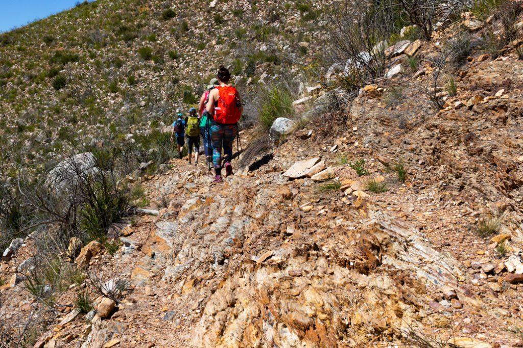 leopard-trail-124