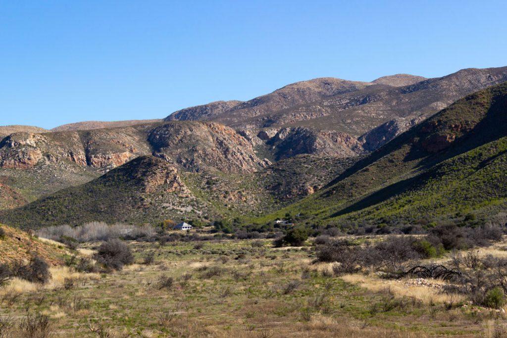 leopard-trail-181