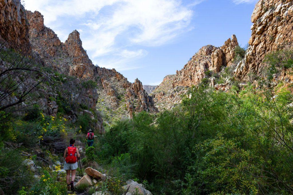 leopard-trail-189