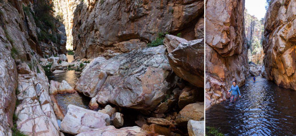 leopard-trail-206