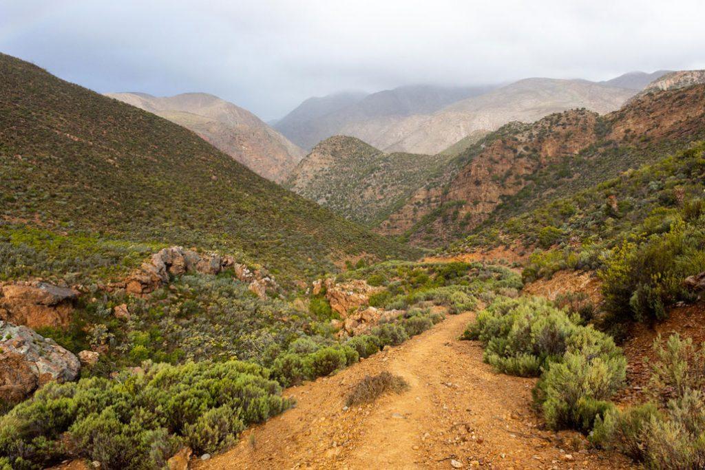 leopard-trail-4