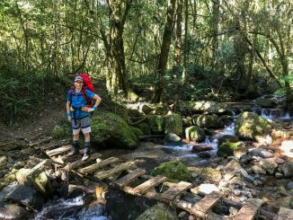 Magoebaskloof Hiking Trail river crossing