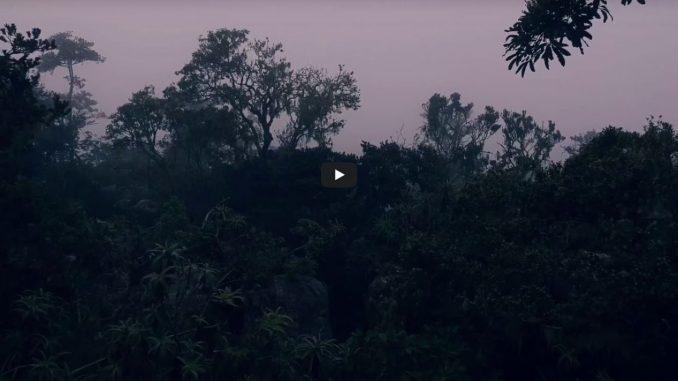 video-this-is-avonture